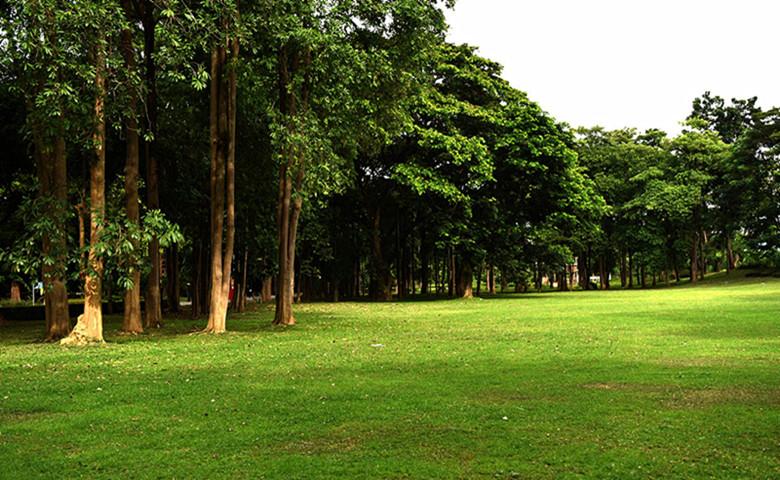 泰国国际养老度假中心园区